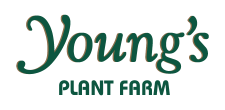 TG_Agriculture_YoungsPlantFarm